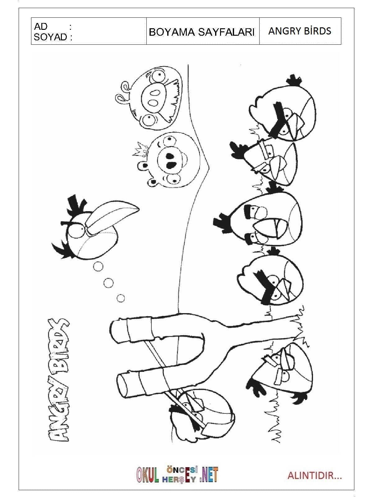 Angry Birds Boyama Sayfalari