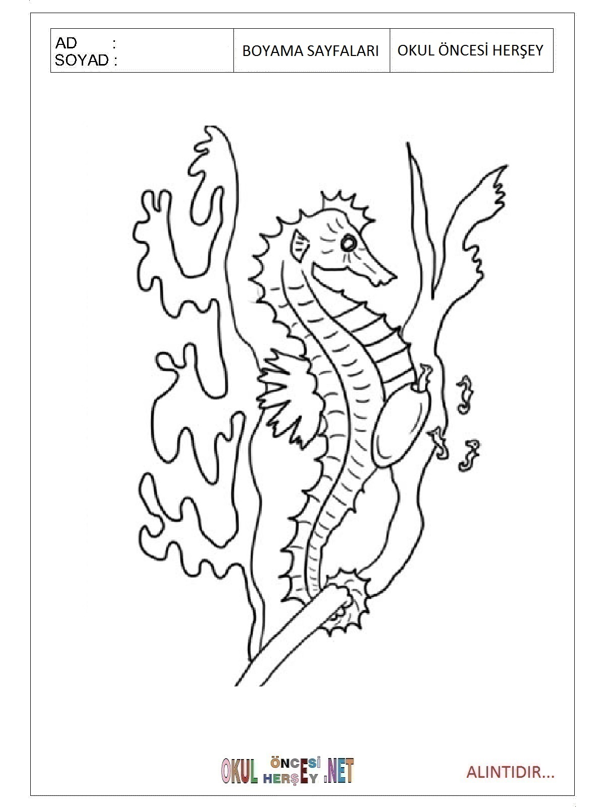 Deniz Atı Boyama Sayfaları