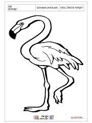 Flamingo Boyama Sayfalari