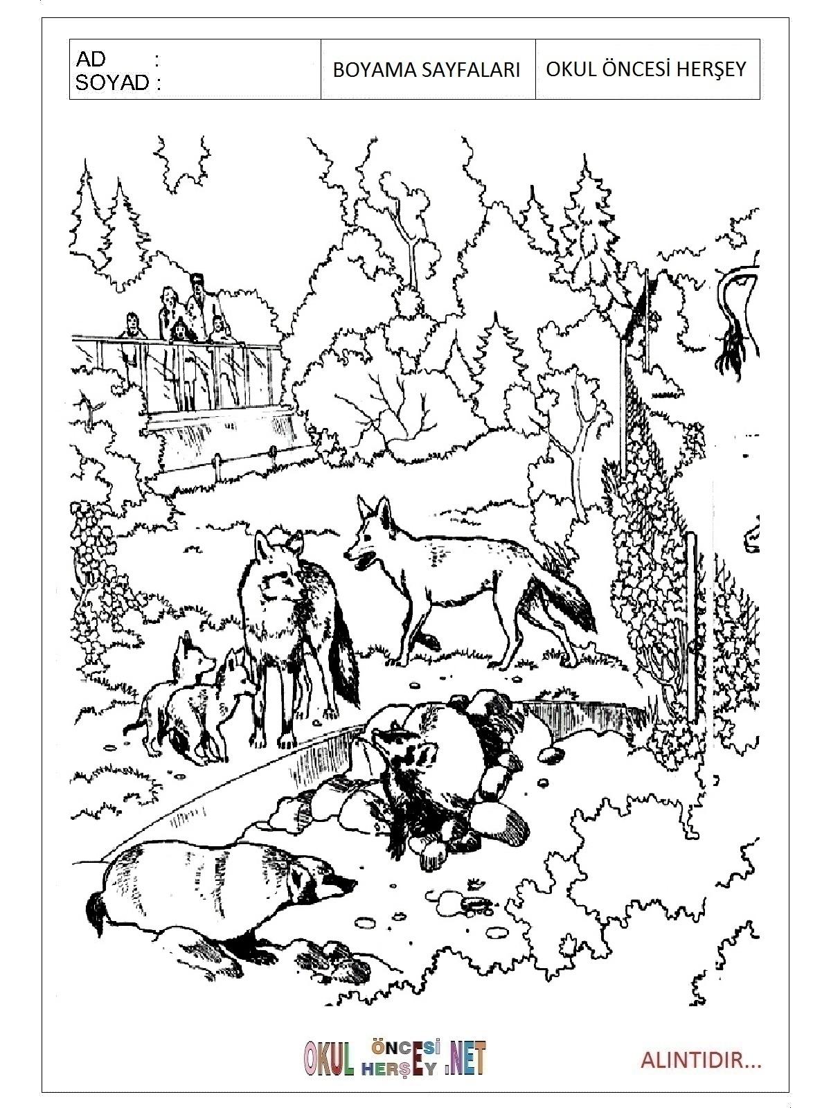 Hayvanat Bahcesi Boyama Sayfalari