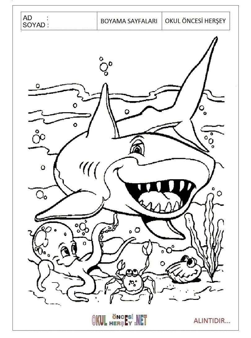 K 246 Pek Balığı Boyama Sayfaları