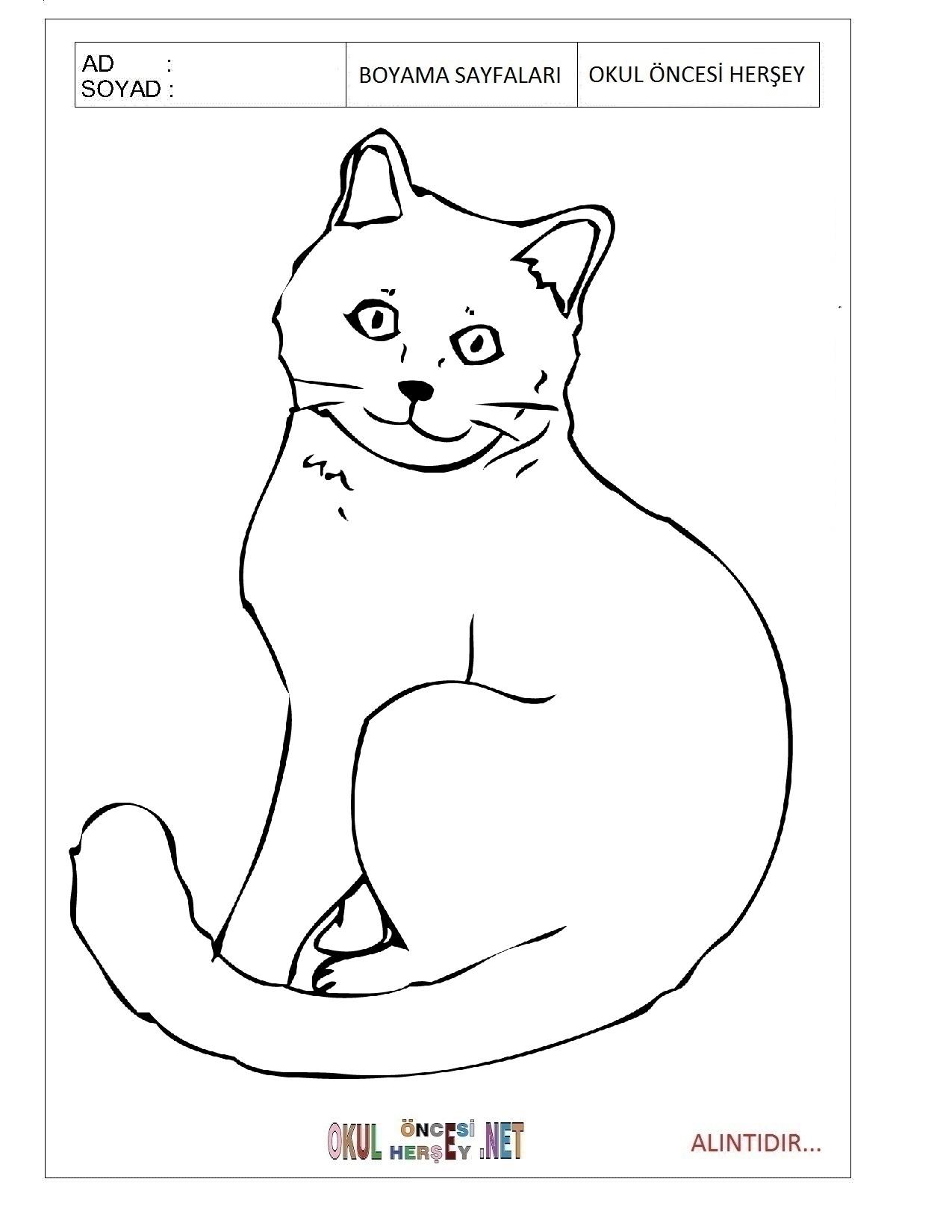 Kedi Boyama Sayfalari