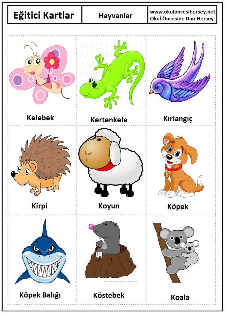Okul öncesi hayvanlar eğitici kartları