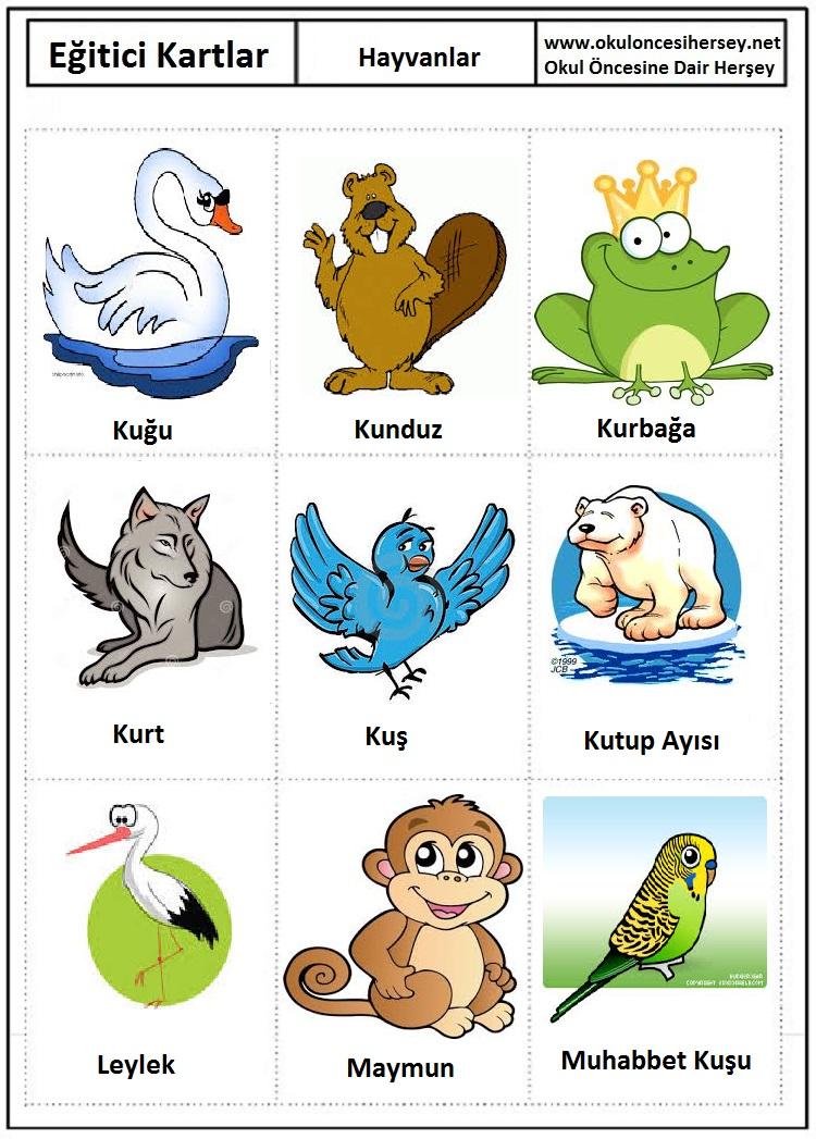 Eğitici kartları hayvanlar eğitici kartları hayvanlar eğitici