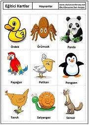 Kartları hayvanlar eğitici kartları hayvanlar eğitici kartları