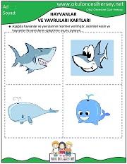 Eğitici kartları hayvanlar ve yavruları eğitici kartları
